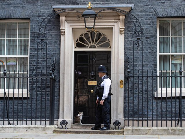 Larry the Downing Street cat outside the door of 10 Dowing Street, as Prime Minister Boris Johnson is discharged from hospital. Photo: PA