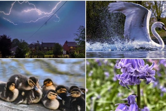10 wonderful photos from Doncaster people