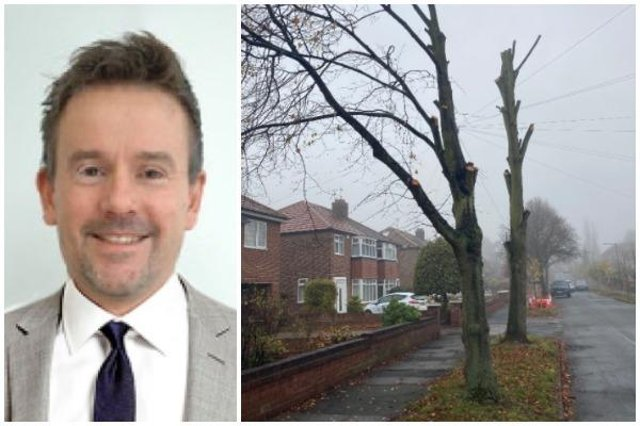 Doncaster Council director of economy and environment, with some felled trees