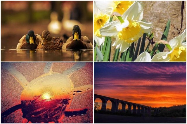 Wonderful spring photos from our Instagram.