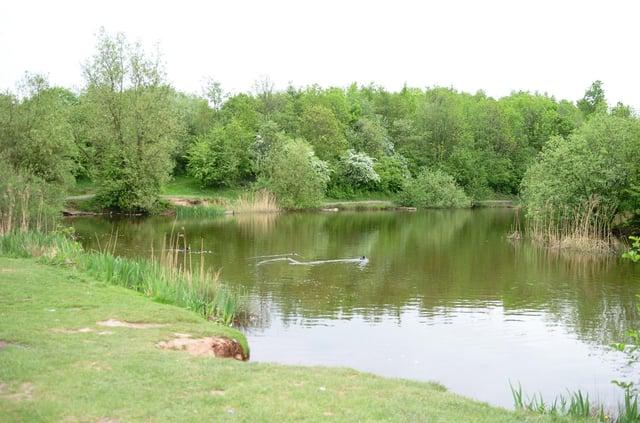 Martinwells lake, Edlington. Picture: Marie Caley D2362MC