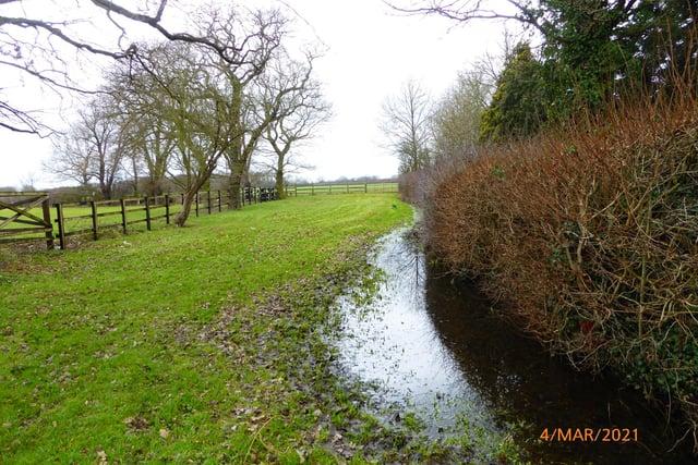 Water logged field on Fenwick walk