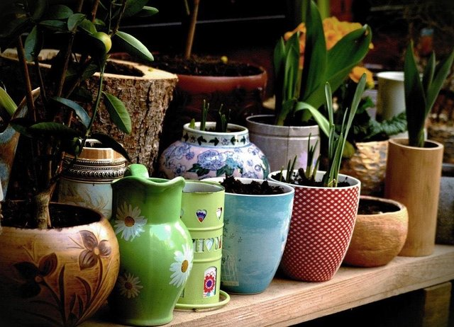 Get creative and reuse old pots