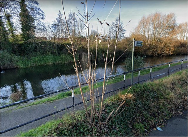 The woman was attacked alongside the canal between Swinton and Mexborough.