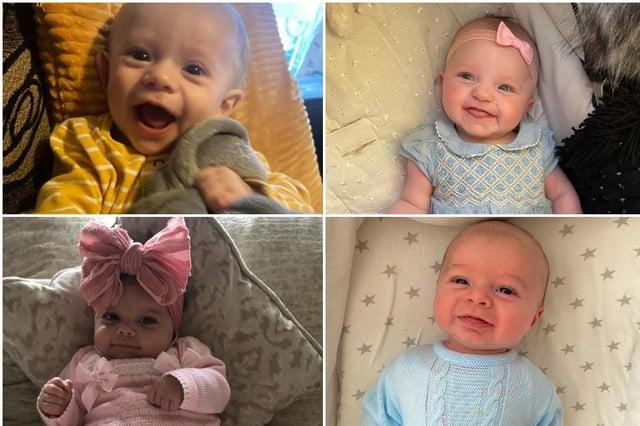 Adorable lockdown babies.
