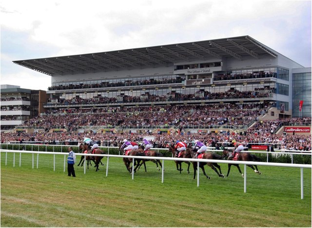 Two horses at Doncaster helped the punter to a huge jackpot.