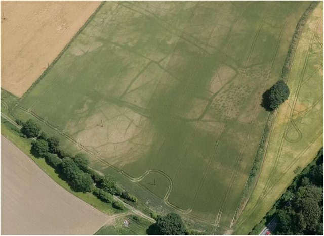 Roman field systems near Doncaster. (Photo: Historic England).