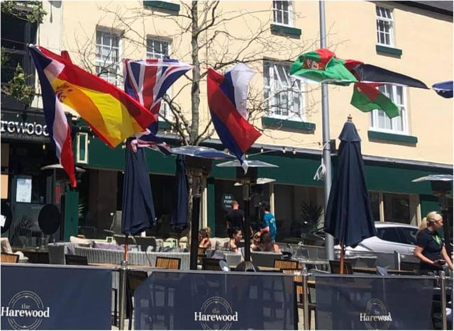 Bosses at The Harewood say they have been ordered to remove flags by Doncaster Council. (Photo: The Harewood).